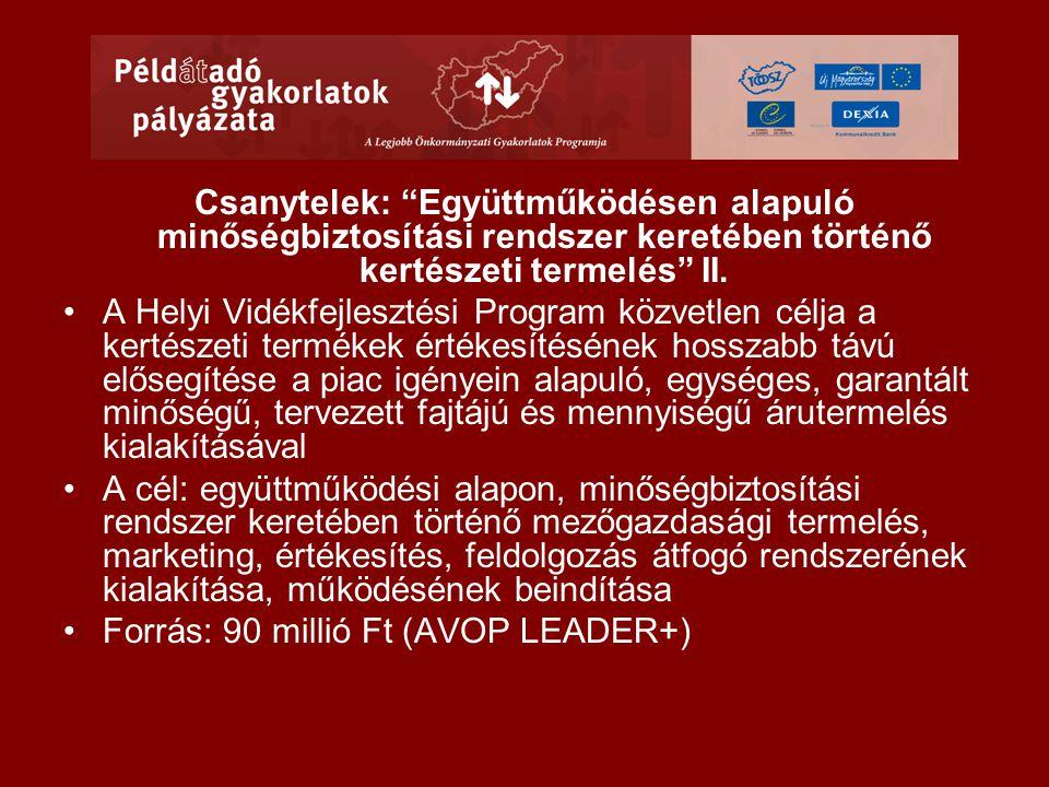 Csanytelek: Együttműködésen alapuló minőségbiztosítási rendszer keretében történő kertészeti termelés II.