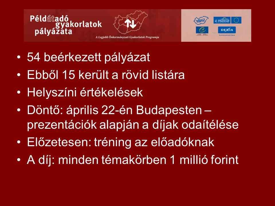•54 beérkezett pályázat •Ebből 15 került a rövid listára •Helyszíni értékelések •Döntő: április 22-én Budapesten – prezentációk alapján a díjak odaítélése •Előzetesen: tréning az előadóknak •A díj: minden témakörben 1 millió forint