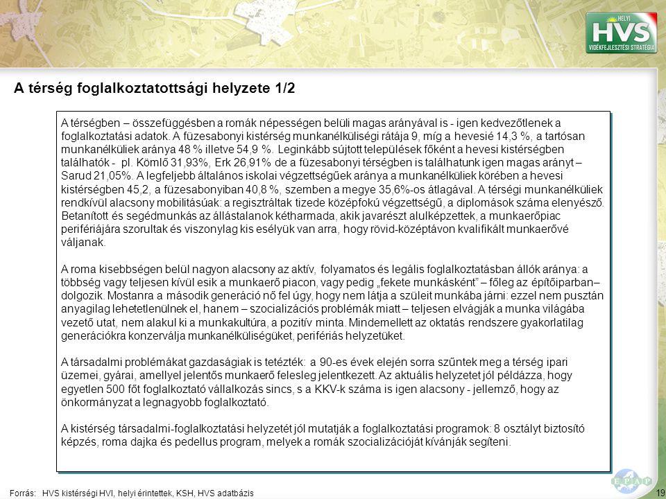 19 A térségben – összefüggésben a romák népességen belüli magas arányával is - igen kedvezőtlenek a foglalkoztatási adatok. A füzesabonyi kistérség mu