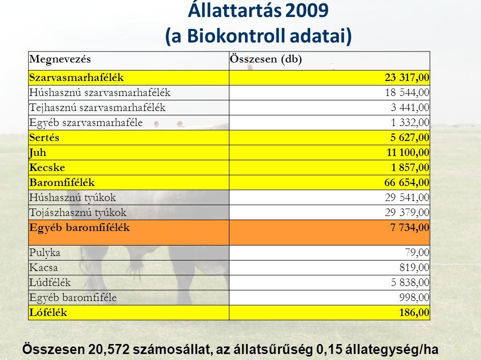 Állattartás 2009 (a Biokontroll adatai) MegnevezésÖsszesen (db) Szarvasmarhafélék23 317,00 Húshasznú szarvasmarhafélék18 544,00 Tejhasznú szarvasmarha