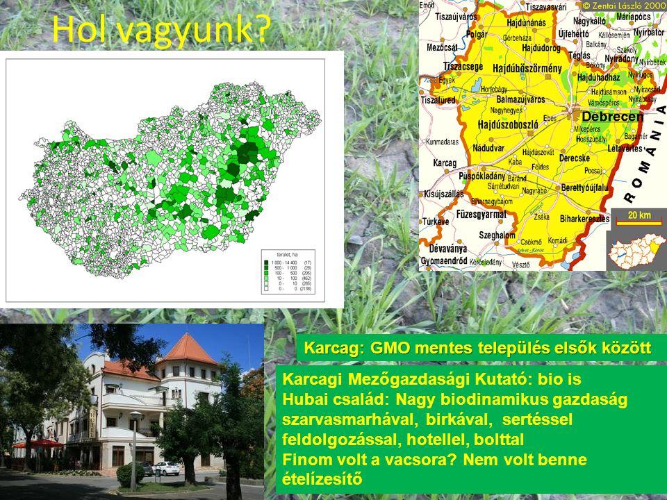 A magyar biogazdálkodás előnyös területei •Kedvező ökológiai feltételek, •GMO mentesség (moratórium, koegzisztencia jogszabályok) •Őshonos növény- és állatfajták megléte •Hagyományőrző gazdálkodás •Képzett gazdák •Magas színvonalú képzés az egyetemekig •EU-val ekvivalens előírások 1995-től •Erős érdekérvényesítő ernyőszervezet •Erős ellenőrzési- tanúsítási rendszer •Két jól ismert védjegy (változatokkal)