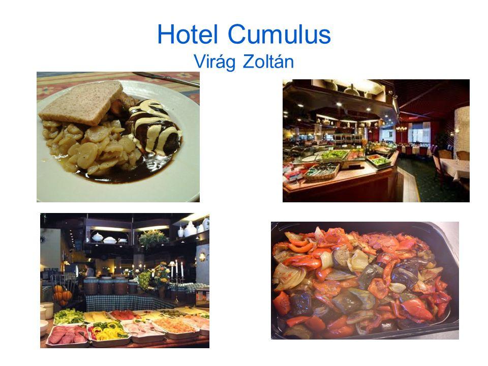 Hotel Cumulus Virág Zoltán