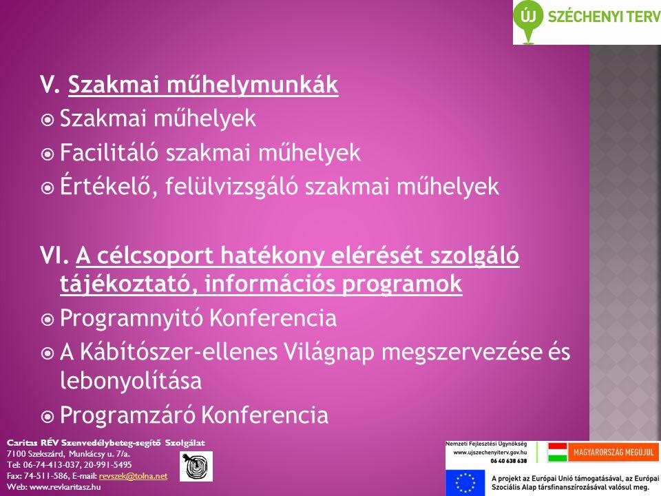 V. Szakmai műhelymunkák  Szakmai műhelyek  Facilitáló szakmai műhelyek  Értékelő, felülvizsgáló szakmai műhelyek VI. A célcsoport hatékony elérését