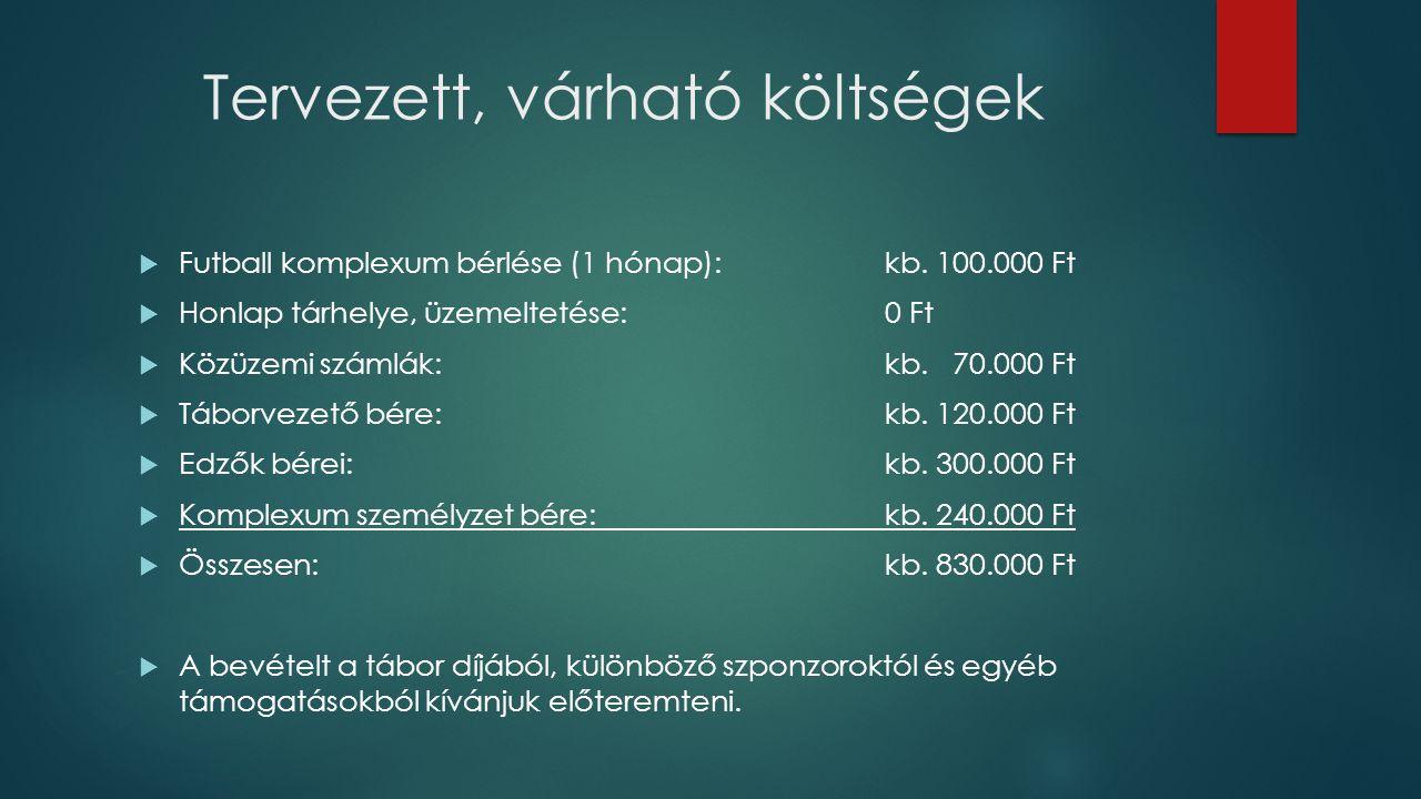 Tervezett, várható költségek  Futball komplexum bérlése (1 hónap):kb. 100.000 Ft  Honlap tárhelye, üzemeltetése:0 Ft  Közüzemi számlák:kb. 70.000 F