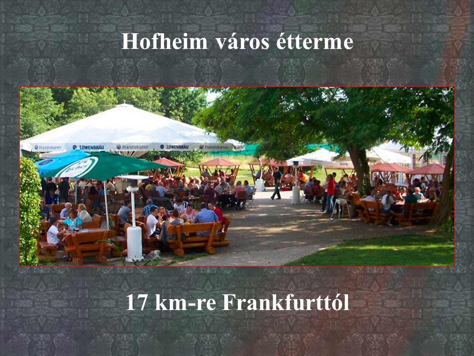 Hofheim város étterme 17 km-re Frankfurttól