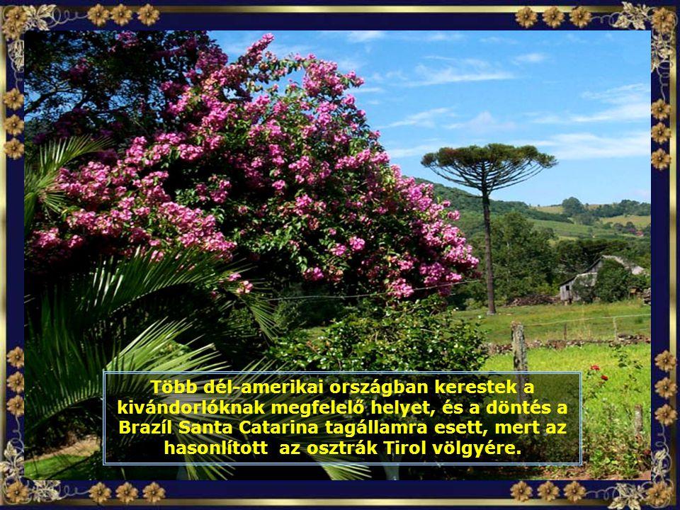 Több dél-amerikai országban kerestek a kivándorlóknak megfelelő helyet, és a döntés a Brazíl Santa Catarina tagállamra esett, mert az hasonlított az osztrák Tirol völgyére.