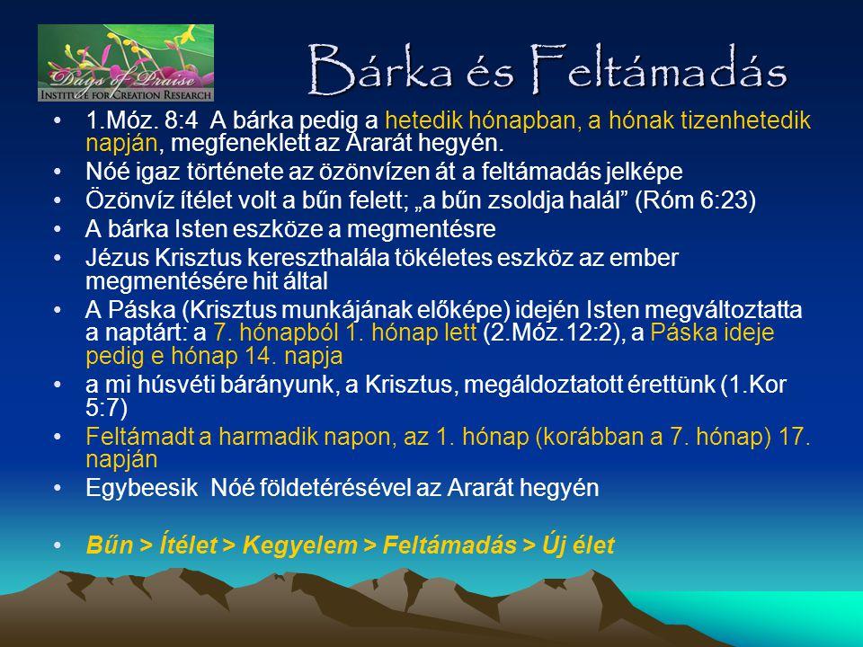 Bárka és Feltámadás •1.Móz. 8:4 A bárka pedig a hetedik hónapban, a hónak tizenhetedik napján, megfeneklett az Ararát hegyén. •Nóé igaz története az ö