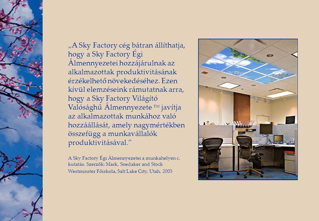 """""""A Sky Factory cég bátran állíthatja, hogy a Sky Factory Égi Álmennyezetei hozzájárulnak az alkalmazottak produktivitásának érzékelhető növekedéséhez."""