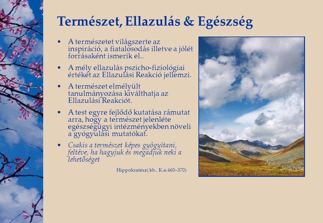 Természet, Ellazulás & Egészség •A természetet világszerte az inspiráció, a fiatalosodás illetve a jólét forrásaként ismerik el.. •A mély ellazulás ps