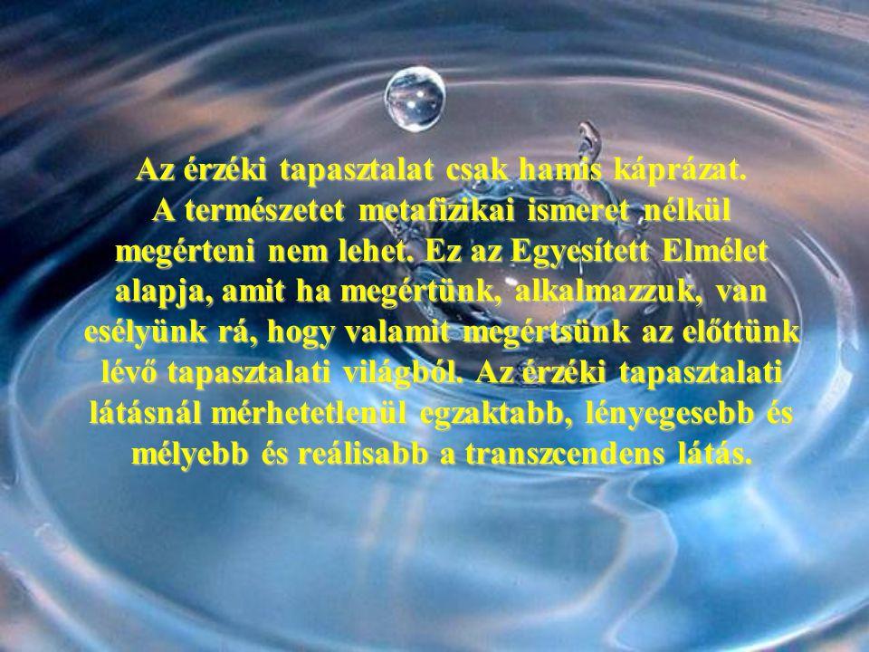 Az érzéki tapasztalat csak hamis káprázat. A természetet metafizikai ismeret nélkül megérteni nem lehet. Ez az Egyesített Elmélet alapja, amit ha megé
