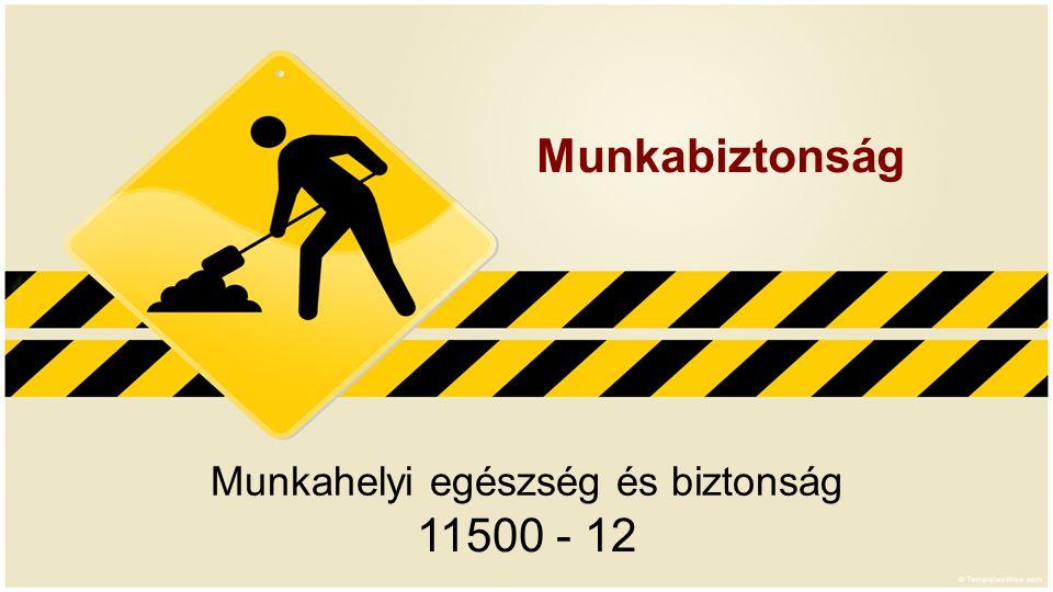 Munkahelyi egészség és biztonság 11500 - 12 Munkabiztonság