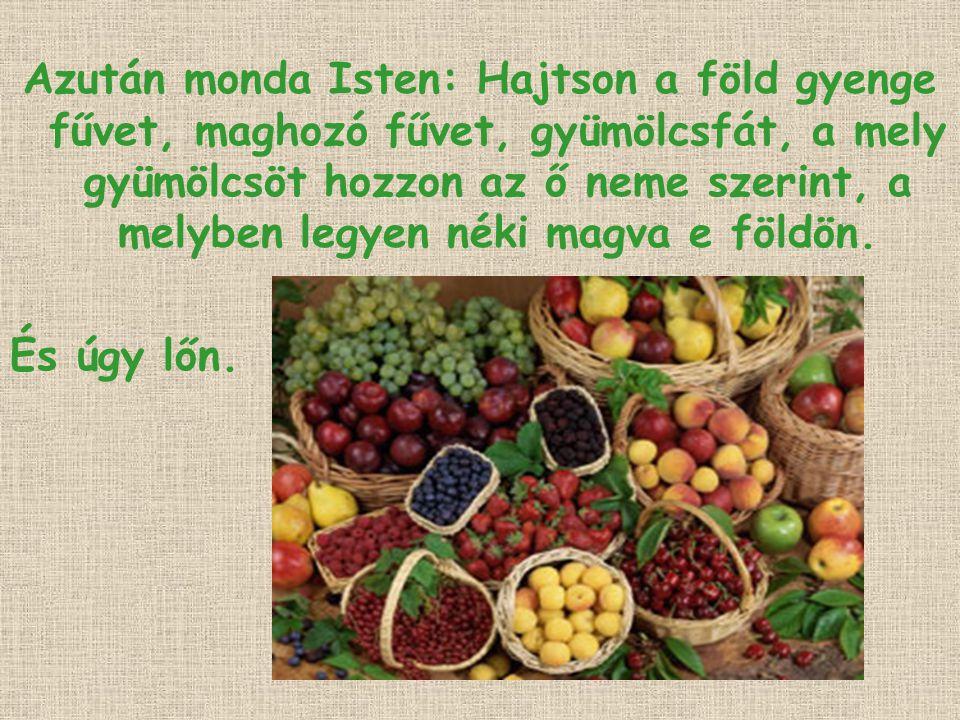 Azután monda Isten: Hajtson a föld gyenge fűvet, maghozó fűvet, gyümölcsfát, a mely gyümölcsöt hozzon az ő neme szerint, a melyben legyen néki magva e