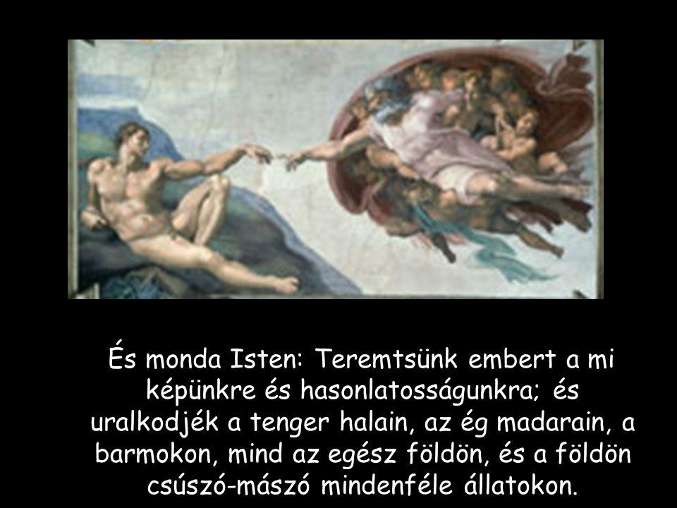 És monda Isten: Teremtsünk embert a mi képünkre és hasonlatosságunkra; és uralkodjék a tenger halain, az ég madarain, a barmokon, mind az egész földön