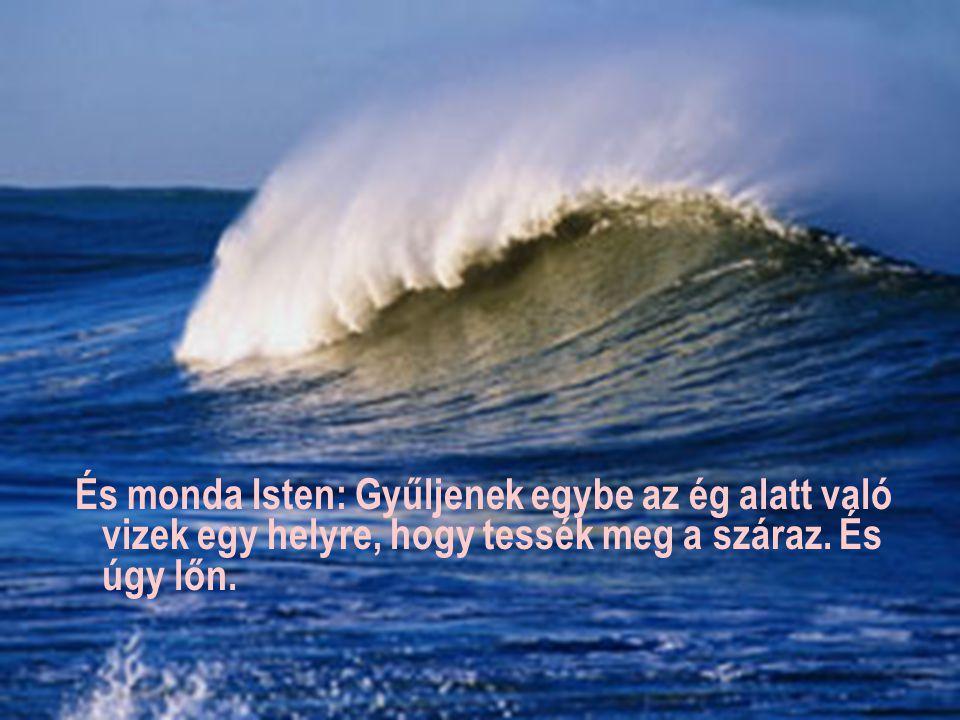 És nevezé Isten a szárazat földnek; az egybegyűlt vizeket pedig tengernek nevezé.