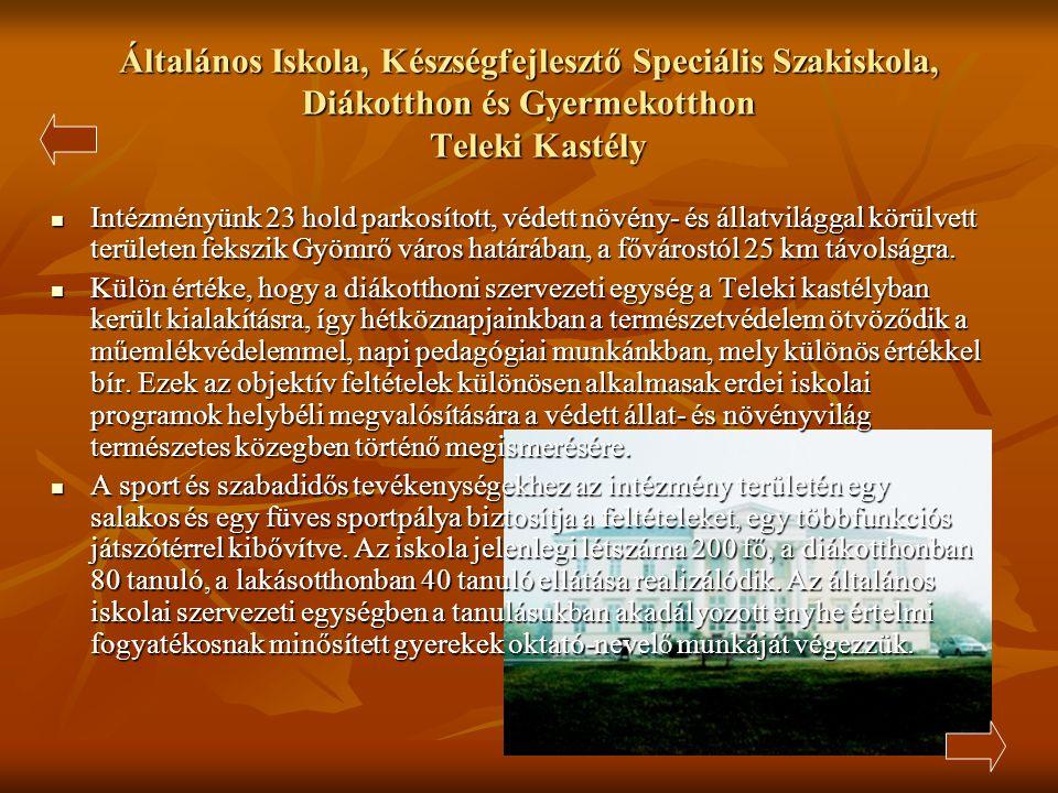 II. Rákóczi Ferenc Általános Iskola  Az iskola a város legkisebb intézménye. 1-8. osztályig évfolyamonként 1-1 csoporttal működik. 2. osztálytól ango