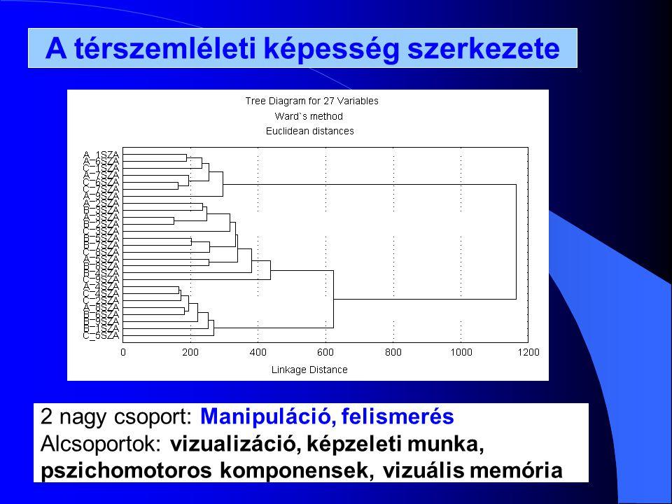 A térszemléleti képesség szerkezete 2 nagy csoport: Manipuláció, felismerés Alcsoportok: vizualizáció, képzeleti munka, pszichomotoros komponensek, vizuális memória
