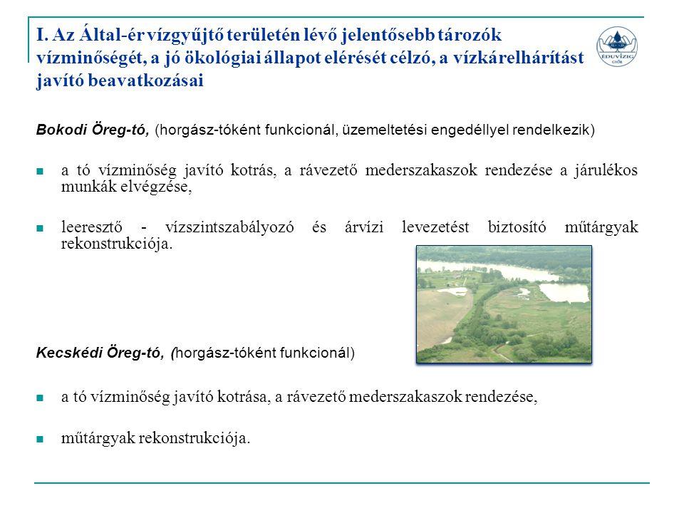 Bokodi Öreg-tó, (horgász-tóként funkcionál, üzemeltetési engedéllyel rendelkezik)  a tó vízminőség javító kotrás, a rávezető mederszakaszok rendezése