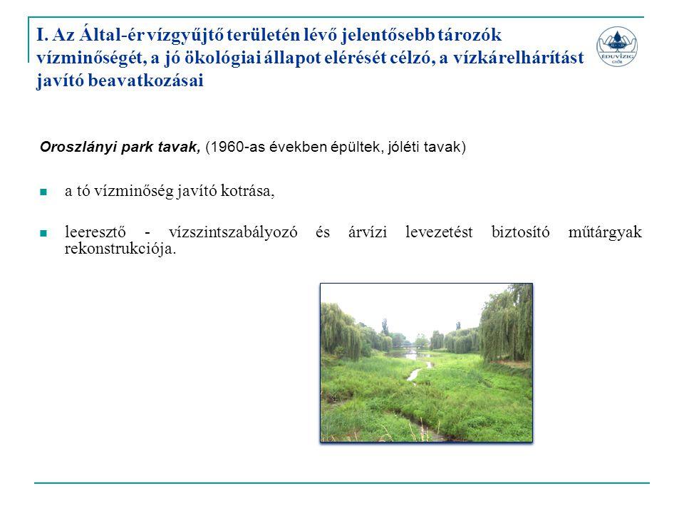 Oroszlányi park tavak, (1960-as években épültek, jóléti tavak)  a tó vízminőség javító kotrása,  leeresztő - vízszintszabályozó és árvízi levezetést