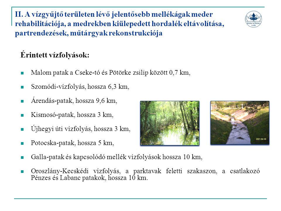 Érintett vízfolyások:  Malom patak a Cseke-tó és Pötörke zsilip között 0,7 km,  Szomódi-vízfolyás, hossza 6,3 km,  Árendás-patak, hossza 9,6 km, 