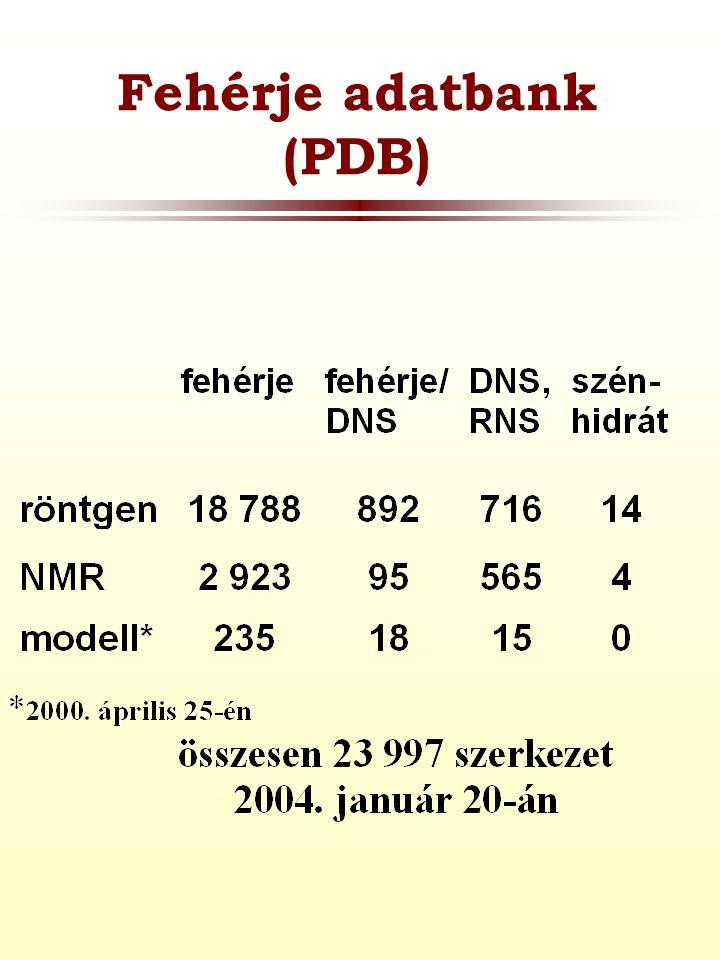 Fehérje adatbank (PDB)