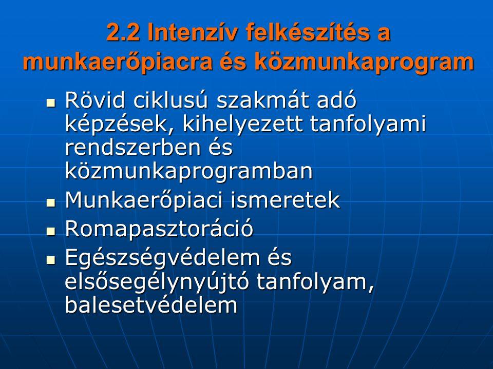 2.2 Intenzív felkészítés a munkaerőpiacra és közmunkaprogram  Rövid ciklusú szakmát adó képzések, kihelyezett tanfolyami rendszerben és közmunkaprogramban  Munkaerőpiaci ismeretek  Romapasztoráció  Egészségvédelem és elsősegélynyújtó tanfolyam, balesetvédelem
