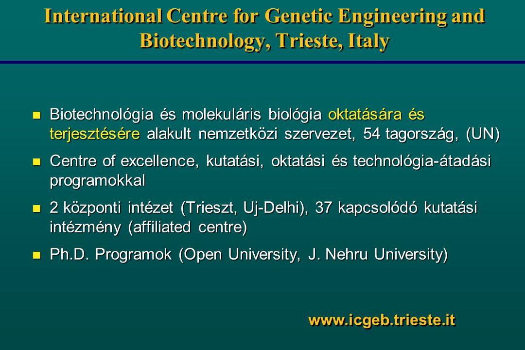International Centre for Genetic Engineering and Biotechnology, Trieste, Italy n Biotechnológia és molekuláris biológia oktatására és terjesztésére alakult nemzetközi szervezet, 54 tagország, (UN) n Centre of excellence, kutatási, oktatási és technológia-átadási programokkal n 2 központi intézet (Trieszt, Uj-Delhi), 37 kapcsolódó kutatási intézmény (affiliated centre) n Ph.D.