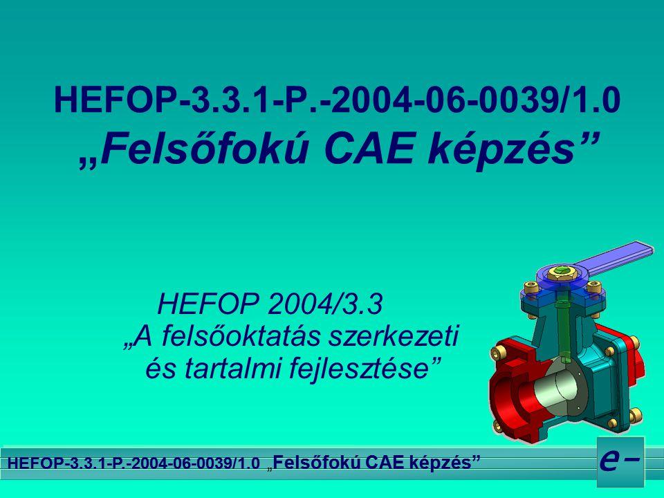 """e- HEFOP-3.3.1-P.-2004-06-0039/1.0 """" Felsőfokú CAE képzés"""" HEFOP 2004/3.3 """"A felsőoktatás szerkezeti és tartalmi fejlesztése"""""""