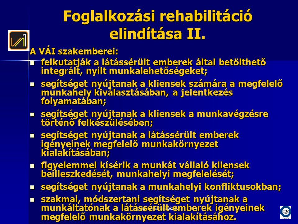 Vakok Állami Intézete Foglalkozási rehabilitáció elindítása II. A VÁI szakemberei:  felkutatják a látássérült emberek által betölthető integrált, nyí