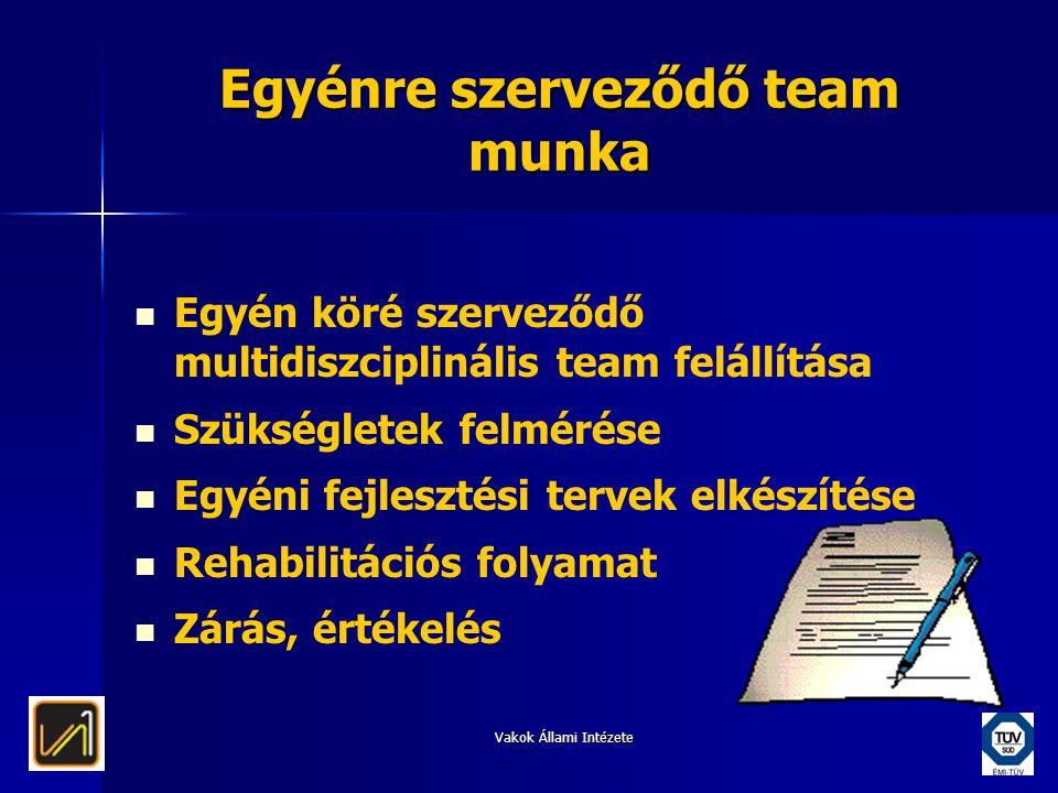 Vakok Állami Intézete Egyénre szerveződő team munka   Egyén köré szerveződő multidiszciplinális team felállítása   Szükségletek felmérése   Egyé