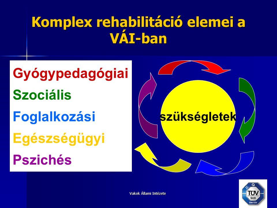 Vakok Állami Intézete Komplex rehabilitáció elemei a VÁI-ban szükségletek Gyógypedagógiai Szociális Foglalkozási Egészségügyi Pszichés