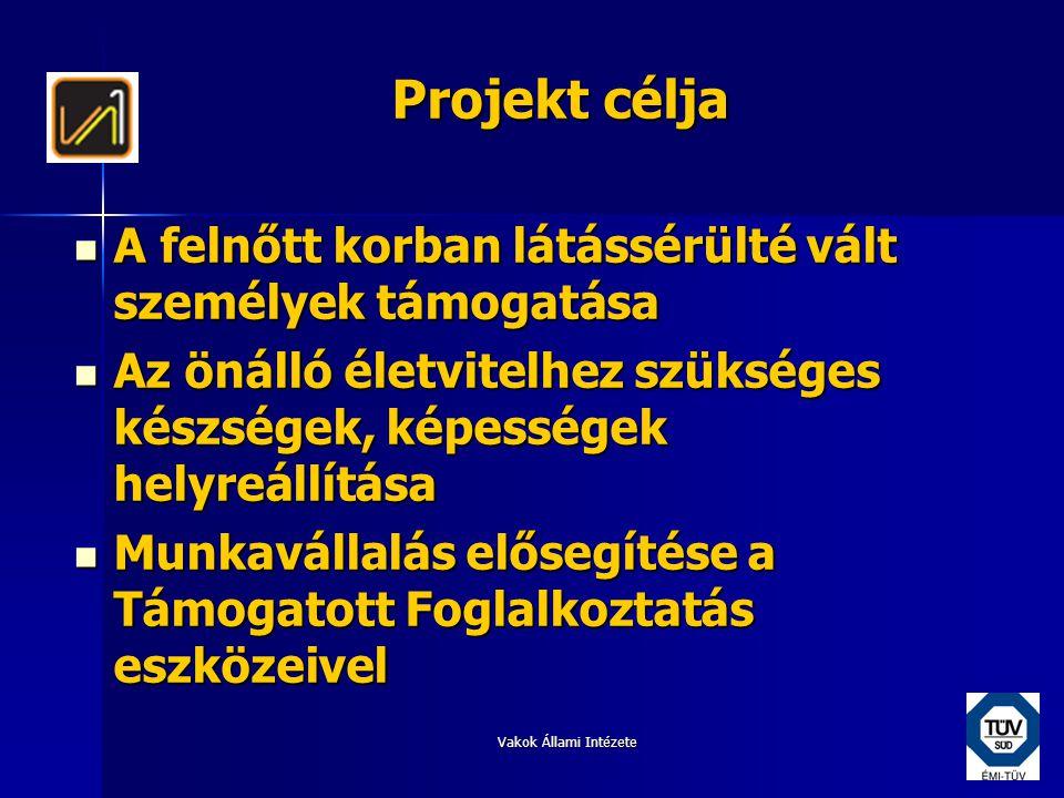 Vakok Állami Intézete A projekt keretében nyújtott szolgáltatások I.