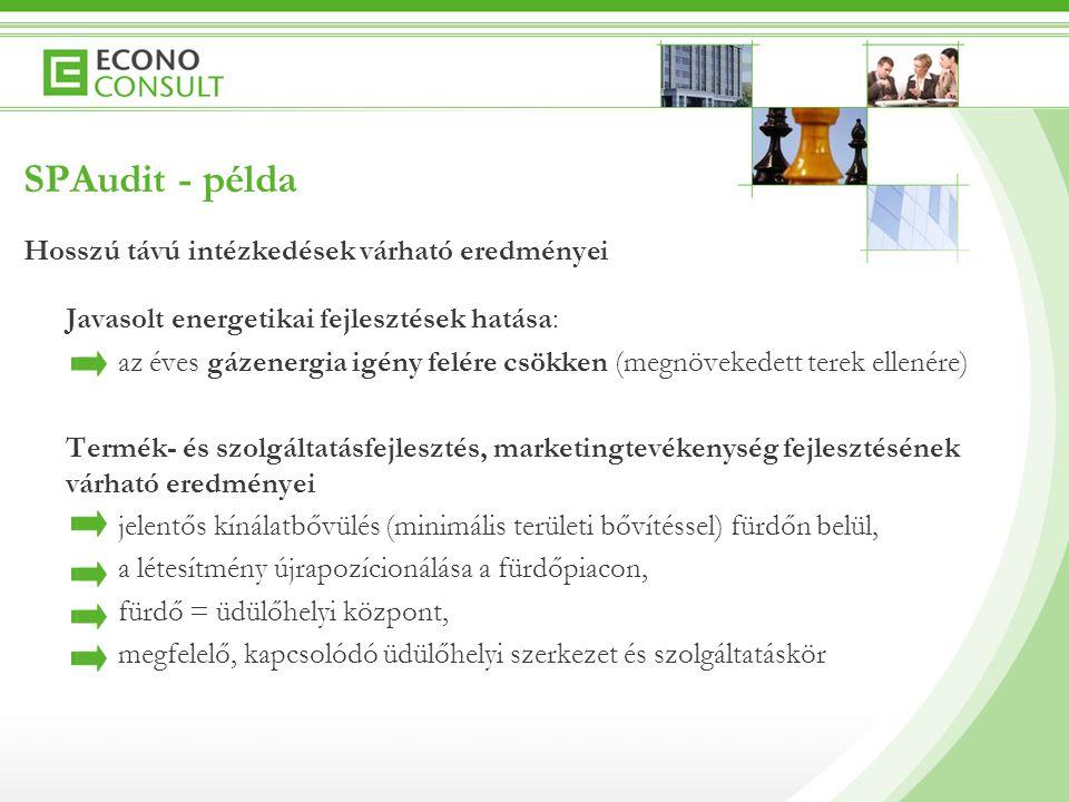 SPAudit – további információk  SPAgetti.