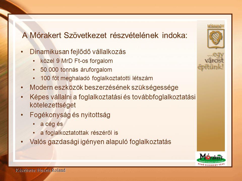 Projekt megvalósításában részt vevő partnerek, és feladataik : Mórahalom Város Képviselő Testülete – Gondozási K p.