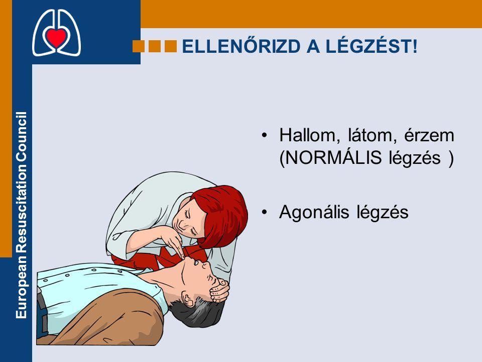 European Resuscitation Council ELLENŐRIZD A LÉGZÉST! •Hallom, látom, érzem (NORMÁLIS légzés ) •Agonális légzés
