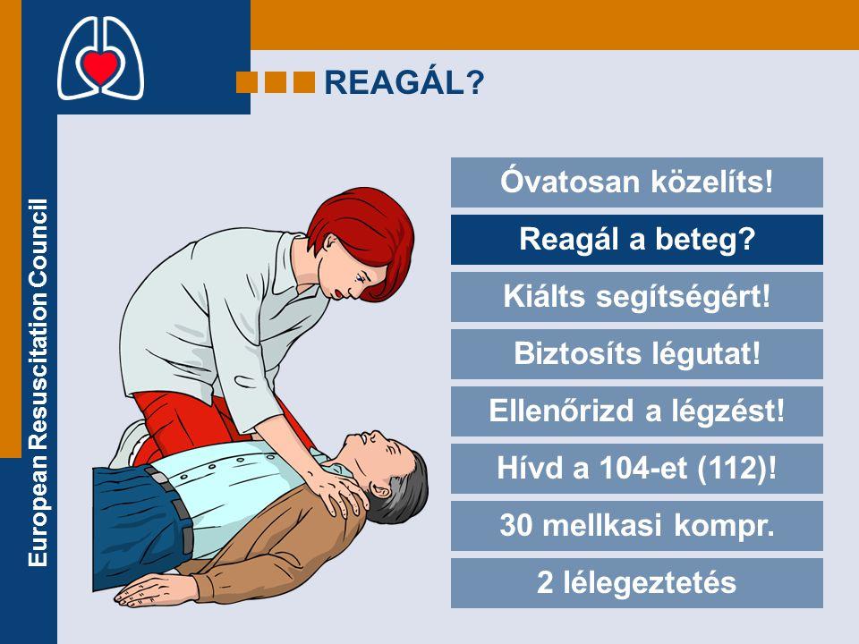 European Resuscitation Council REAGÁL? Óvatosan közelíts! Reagál a beteg? Kiálts segítségért! Biztosíts légutat! Ellenőrizd a légzést! Hívd a 104-et (