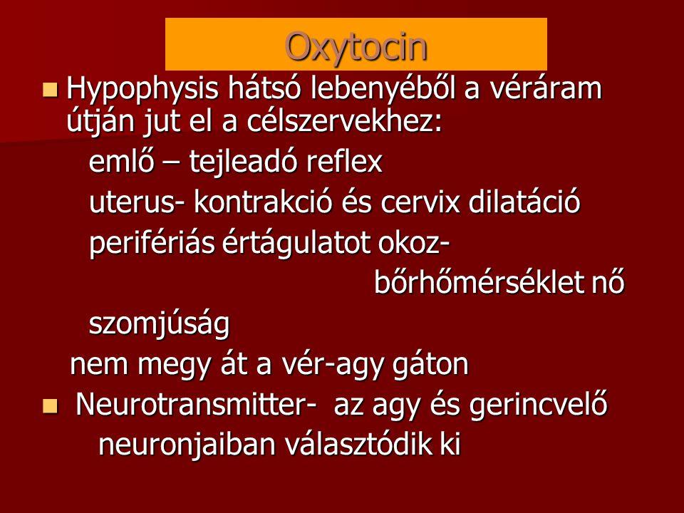 Oxytocin  Hypophysis hátsó lebenyéből a véráram útján jut el a célszervekhez: emlő – tejleadó reflex emlő – tejleadó reflex uterus- kontrakció és cervix dilatáció uterus- kontrakció és cervix dilatáció perifériás értágulatot okoz- perifériás értágulatot okoz- bőrhőmérséklet nő bőrhőmérséklet nő szomjúság szomjúság nem megy át a vér-agy gáton nem megy át a vér-agy gáton  Neurotransmitter- az agy és gerincvelő neuronjaiban választódik ki neuronjaiban választódik ki