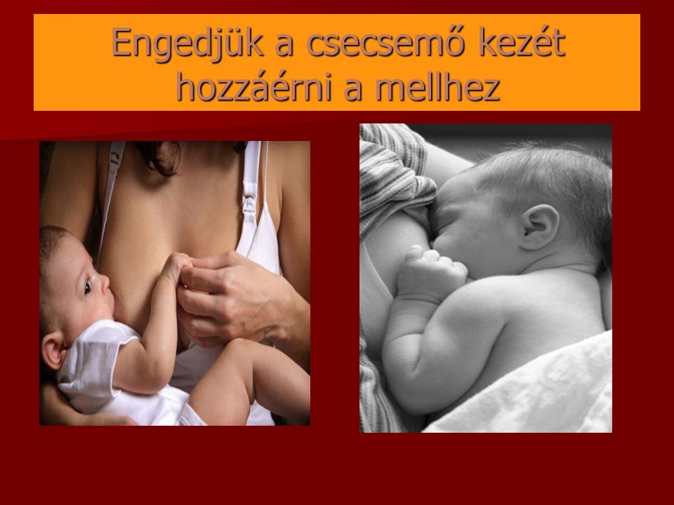 Engedjük a csecsemő kezét hozzáérni a mellhez