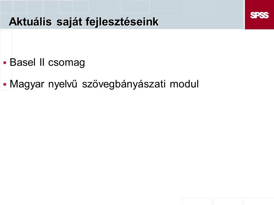 Aktuális saját fejlesztéseink  Basel II csomag  Magyar nyelvű szövegbányászati modul