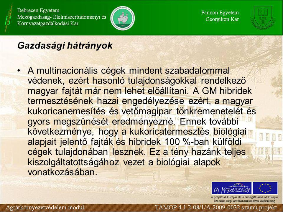Gazdasági hátrányok •A multinacionális cégek mindent szabadalommal védenek, ezért hasonló tulajdonságokkal rendelkező magyar fajtát már nem lehet előállítani.