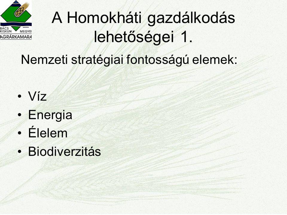 A Homokháti gazdálkodás lehetőségei 1. Nemzeti stratégiai fontosságú elemek: •Víz •Energia •Élelem •Biodiverzitás