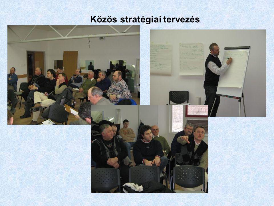 Közös stratégiai tervezés