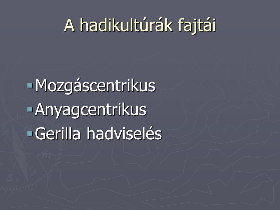 A hadikultúrák fajtái  Mozgáscentrikus  Anyagcentrikus  Gerilla hadviselés