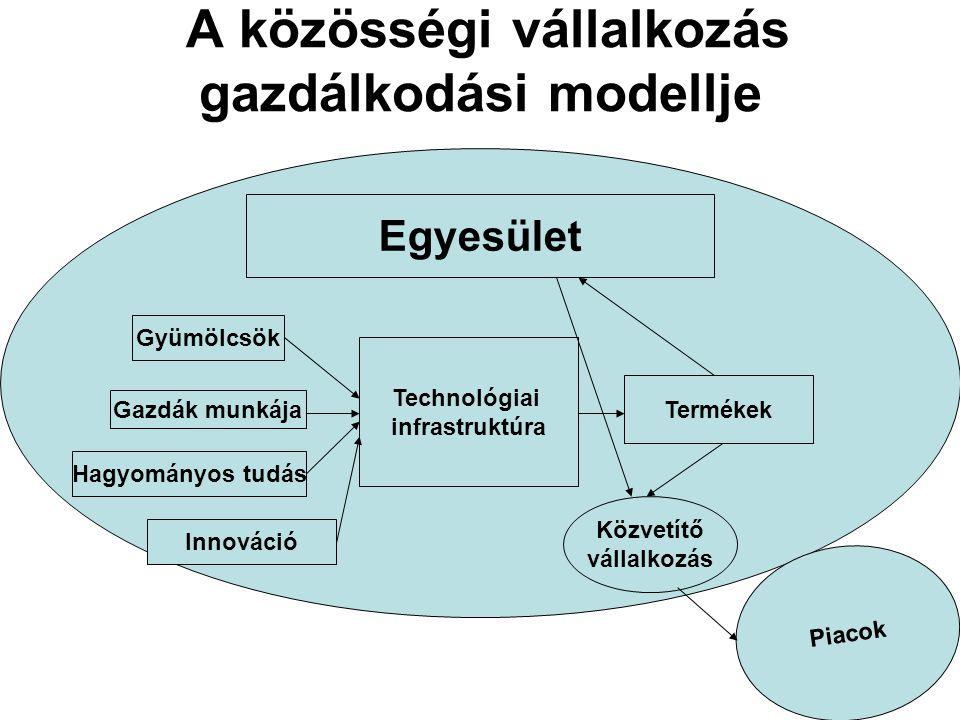A közösségi vállalkozás gazdálkodási modellje Egyesület Technológiai infrastruktúra Piacok Gyümölcsök Gazdák munkája Hagyományos tudás Innováció Termé