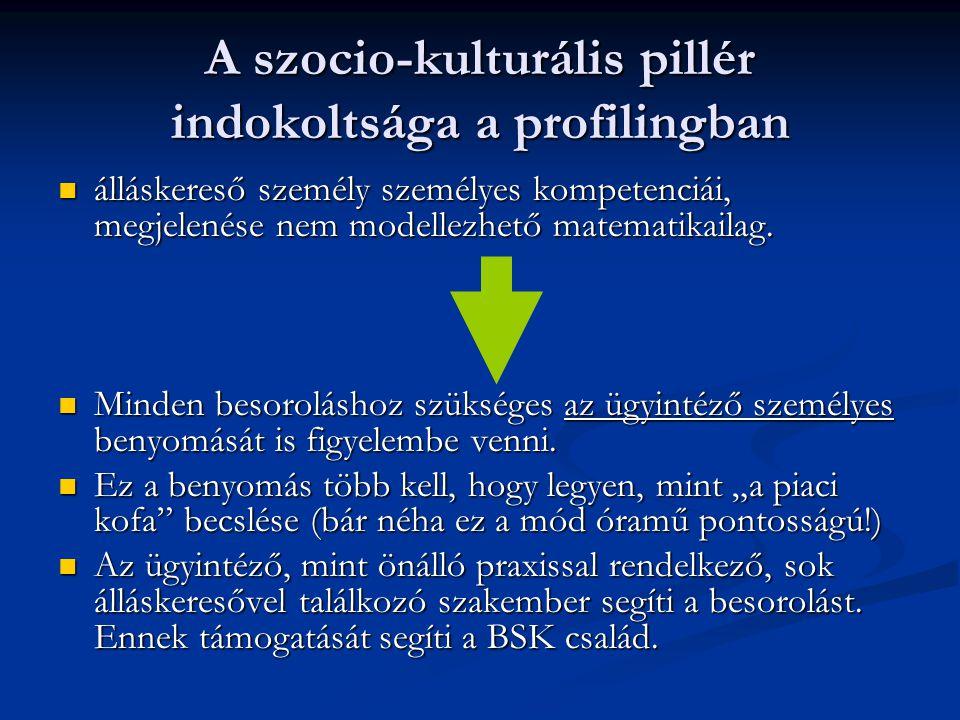 A szocio-kulturális pillér indokoltsága a profilingban  álláskereső személy személyes kompetenciái, megjelenése nem modellezhető matematikailag.