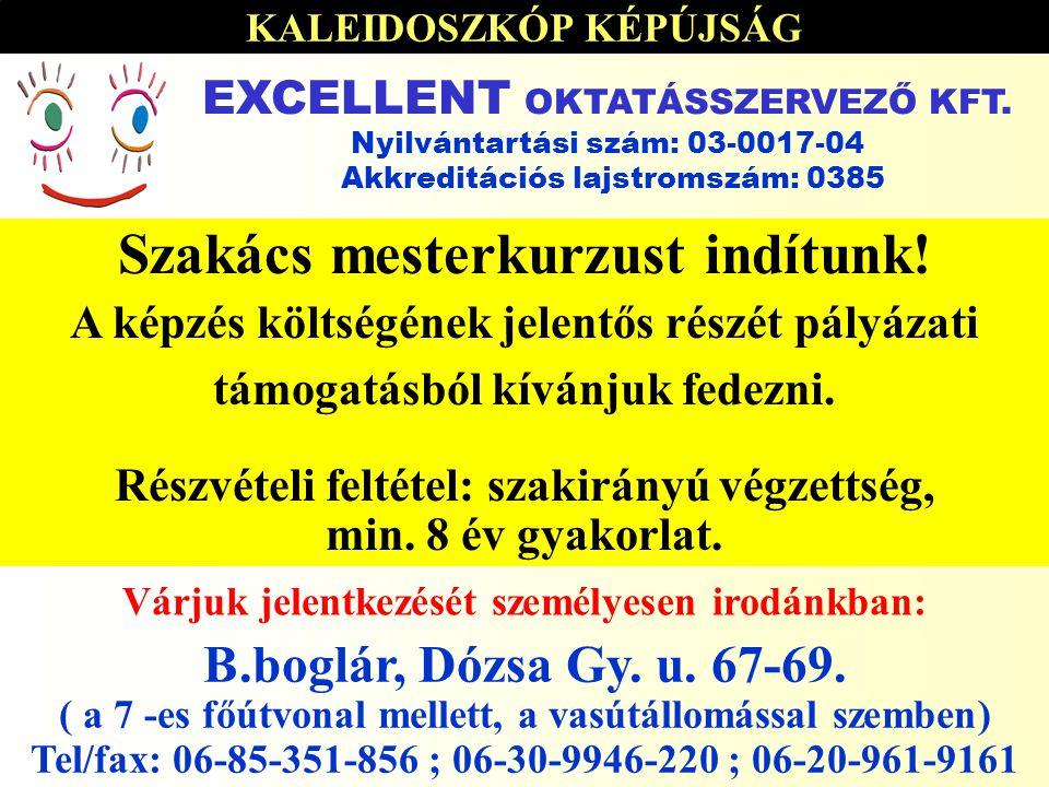 KALEIDOSZKÓP KÉPÚJSÁG 2006.01.03-2006.01.17 par Szakács mesterkurzust indítunk.