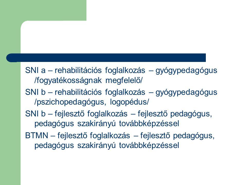 SNI a – rehabilitációs foglalkozás – gyógypedagógus /fogyatékosságnak megfelelő/ SNI b – rehabilitációs foglalkozás – gyógypedagógus /pszichopedagógus, logopédus/ SNI b – fejlesztő foglalkozás – fejlesztő pedagógus, pedagógus szakirányú továbbképzéssel BTMN – fejlesztő foglalkozás – fejlesztő pedagógus, pedagógus szakirányú továbbképzéssel