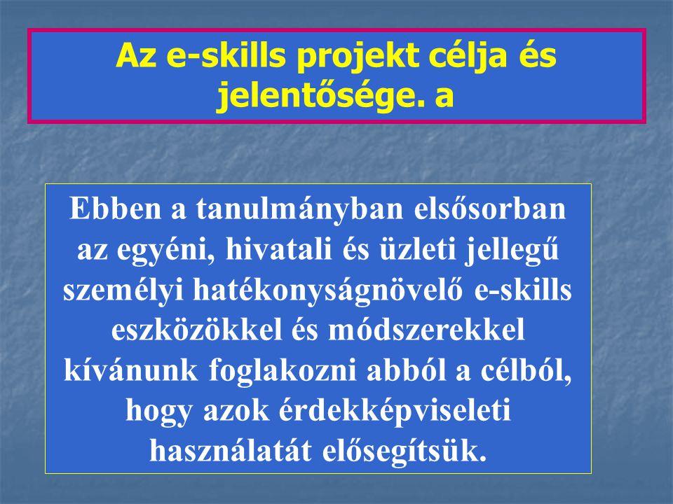 Az e-skills projekt célja és jelentősége.