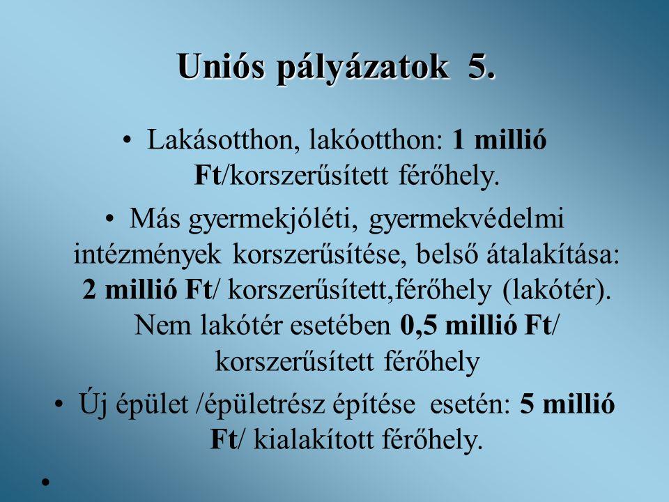 Uniós pályázatok 5. •Lakásotthon, lakóotthon: 1 millió Ft/korszerűsített férőhely. •Más gyermekjóléti, gyermekvédelmi intézmények korszerűsítése, bels