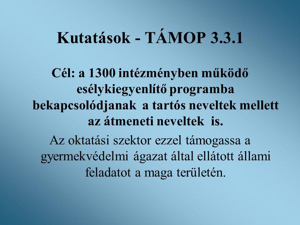 Kutatások - TÁMOP 3.3.1 Cél: a 1300 intézményben működő esélykiegyenlítő programba bekapcsolódjanak a tartós neveltek mellett az átmeneti neveltek is.
