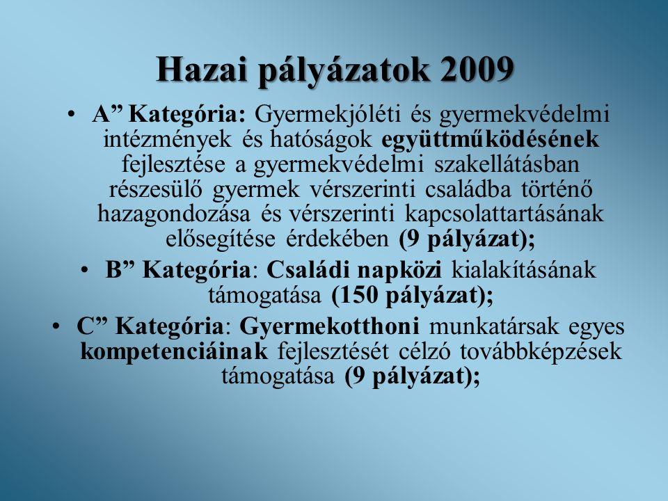 """Hazai pályázatok 2009 •A"""" Kategória: Gyermekjóléti és gyermekvédelmi intézmények és hatóságok együttműködésének fejlesztése a gyermekvédelmi szakellát"""